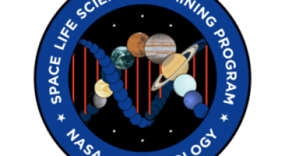 NASA SLSTP Program Logo